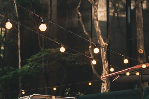 燈, 燈光, 聖誕燈飾 的 免費圖庫相片