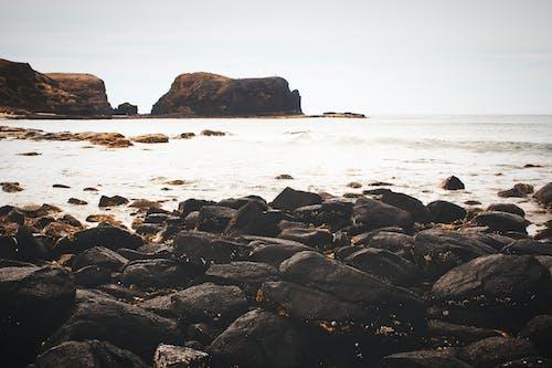 岩石, 岸邊, 招手, 日落 的 免费素材照片