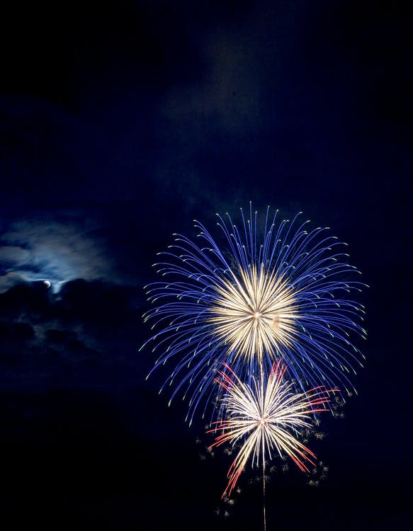 Blue and Red Brocade Fireworks at Night