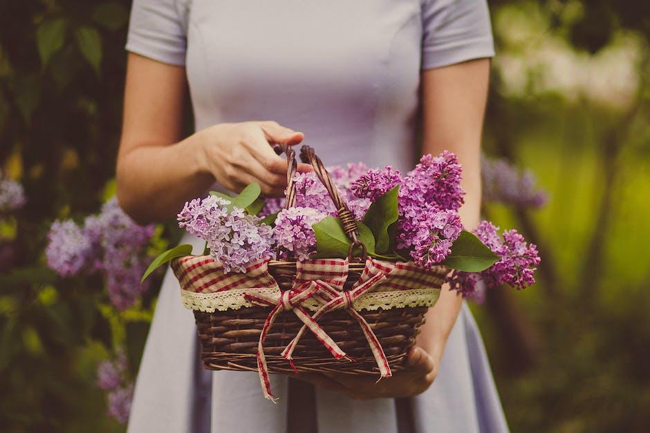 Woman Carrying Purple Flowers