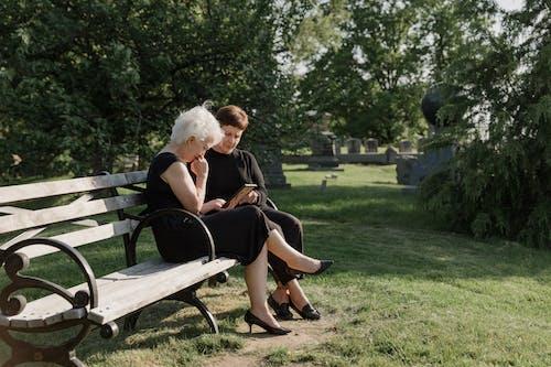 Fotos de stock gratuitas de banco, cementerio, césped