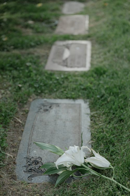 White Flowers on a Grave Stone