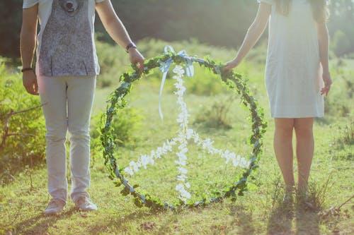 Kostnadsfri bild av dagtid, fred, gräs, ha på sig