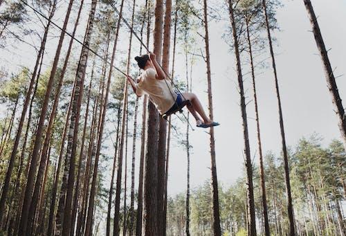 균형, 나무, 남자의 무료 스톡 사진
