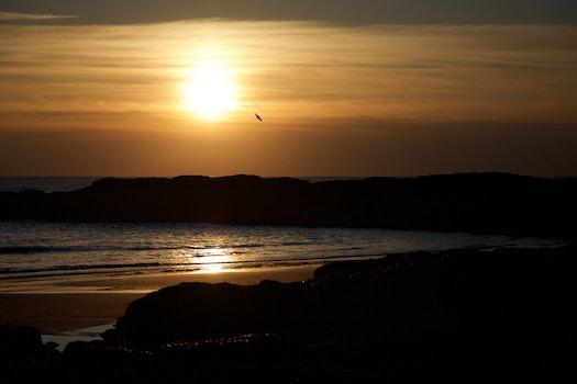 Blue Seashore during Sunset