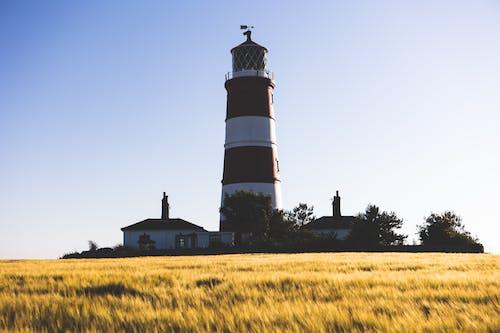 Free stock photo of beacon, coast, countryside
