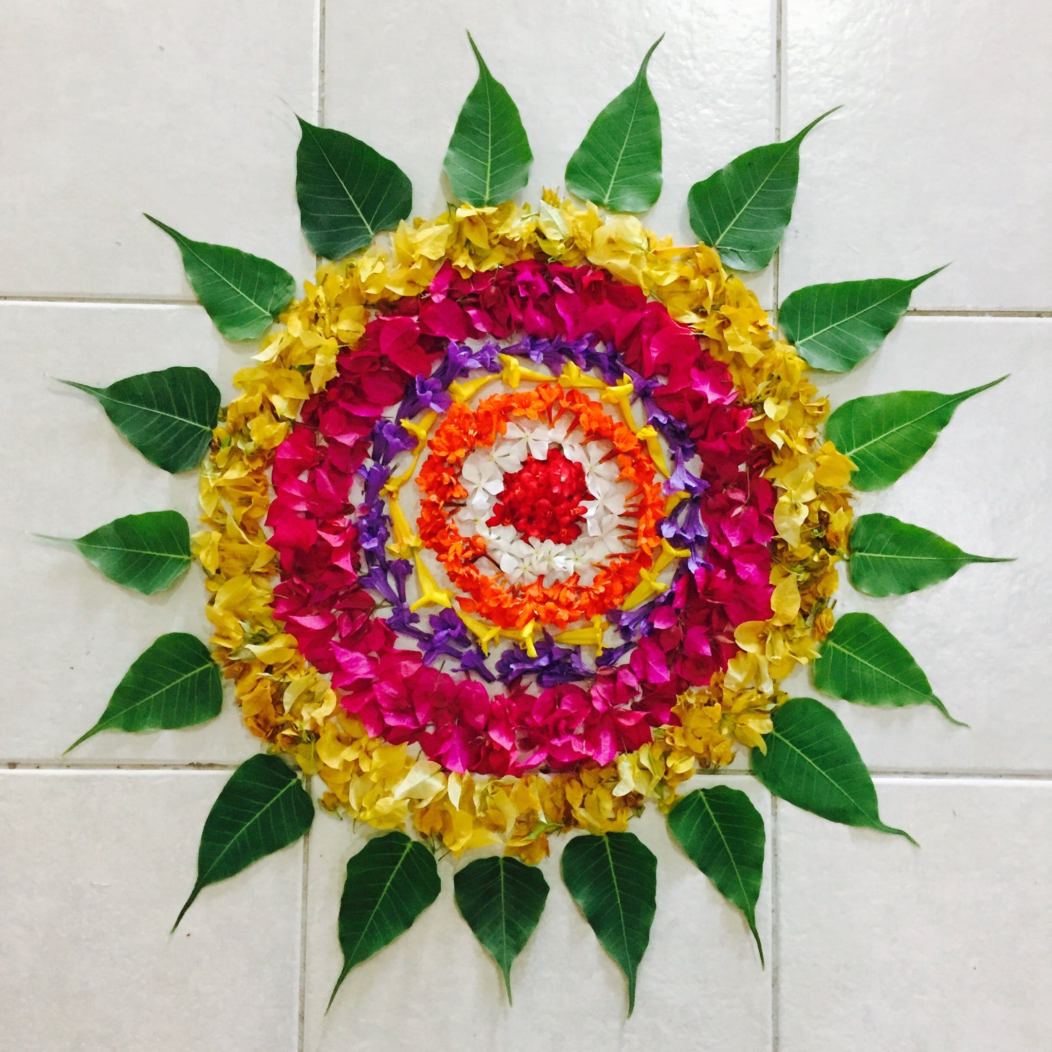 Pink, Yellow, and Green Leaves and Flowers Art
