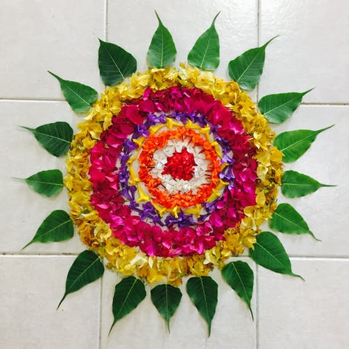 Flatlay, 植物群, 瓷磚, 花瓣 的 免費圖庫相片