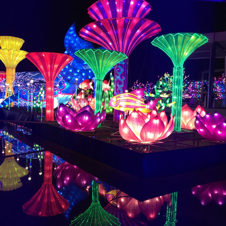 dubai, glow garden