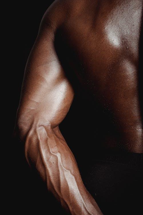 Ilmainen kuvapankkikuva tunnisteilla eroottinen, fitness, hauikset