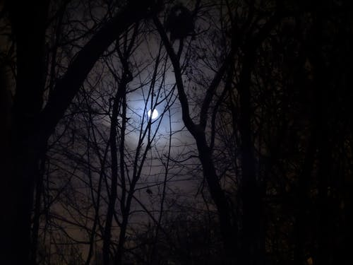 Бесплатное стоковое фото с луна, полная луна, суперлуна