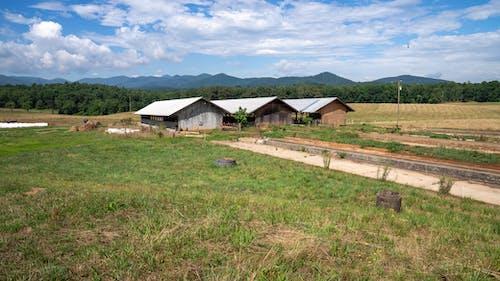 Photos gratuites de ferme de montagne, fermes de biltmore, montagnes