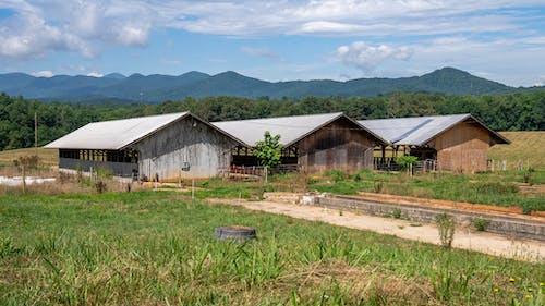 Photos gratuites de abandonné, abri de jardin, agriculture