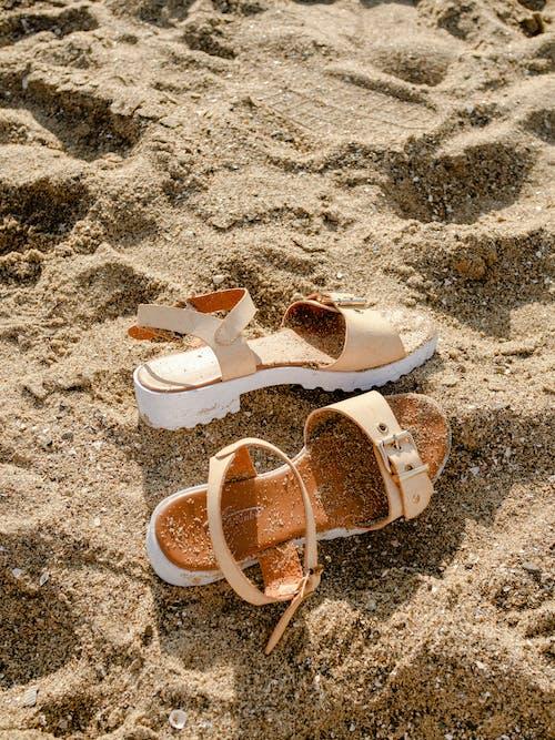 Immagine gratuita di acqua, bagnasciuga, calzature