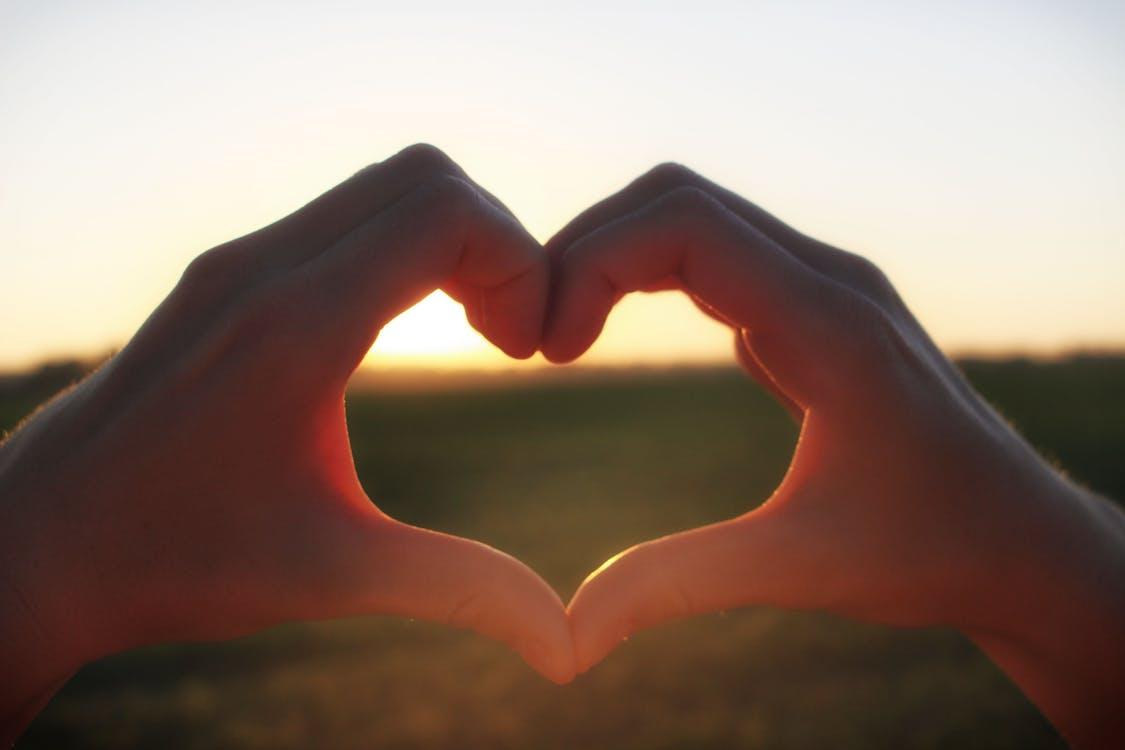 Fotos de stock gratuitas de corazón, manos, naturaleza