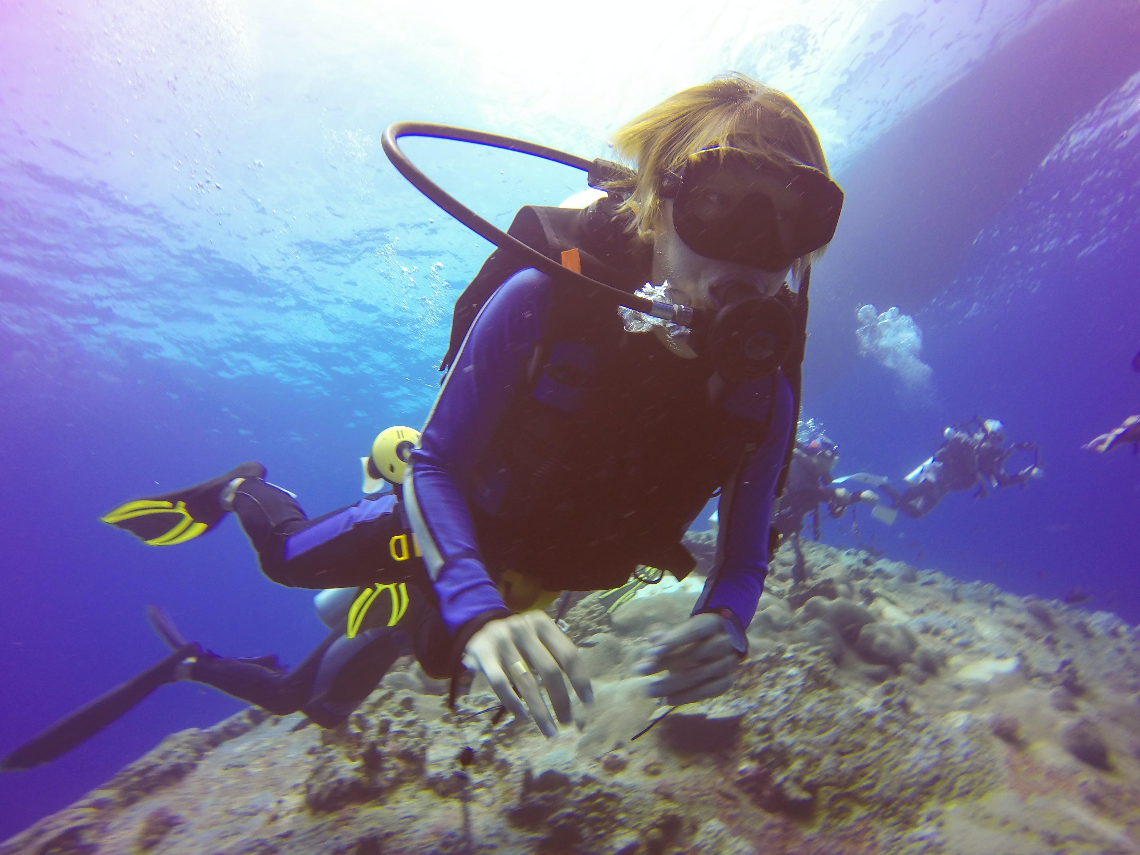 คลังภาพถ่ายฟรี ของ การค้นพบ, การดำน้ำ, การดำน้ำลึก, การผจญภัย