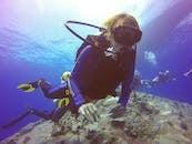海底潛水員