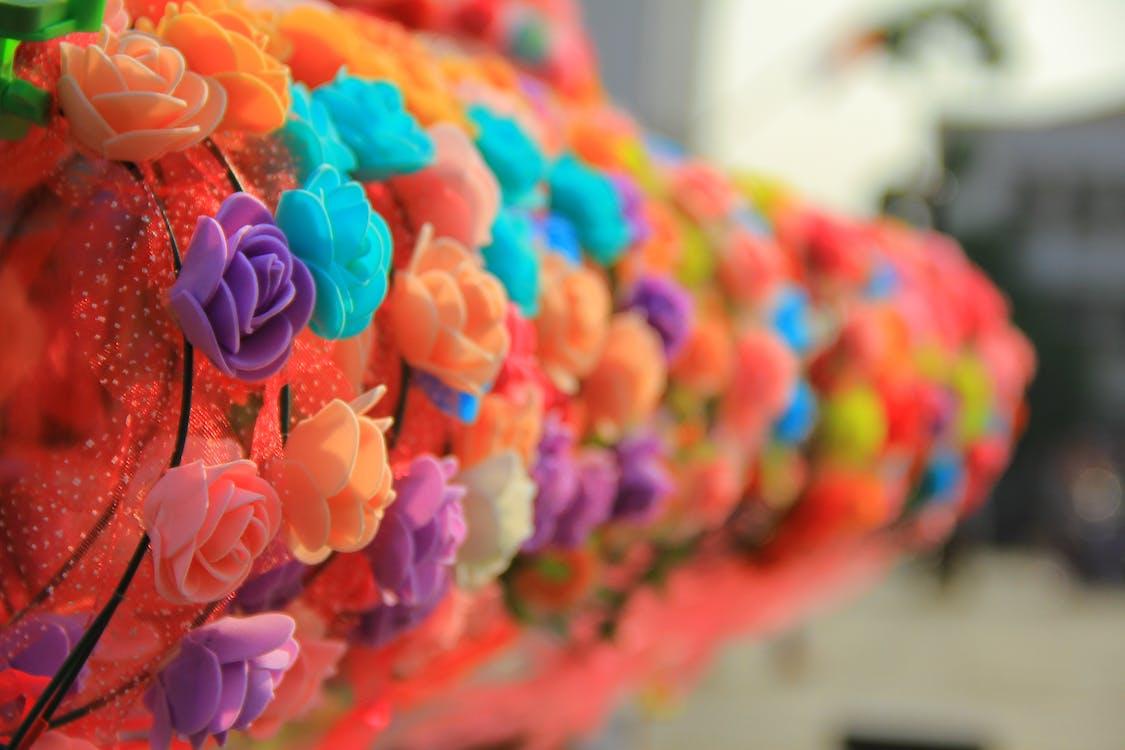 coloré, fleurs
