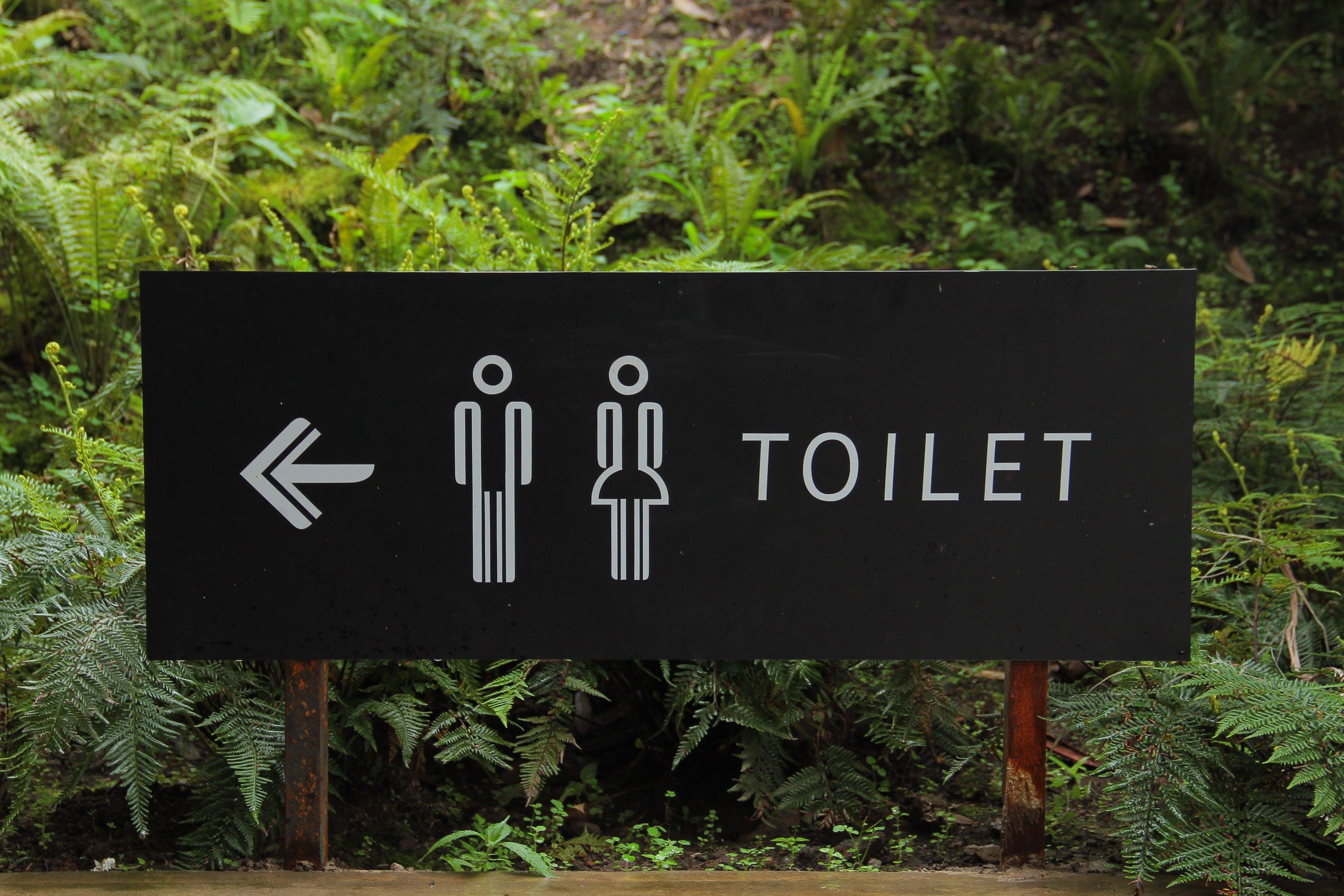 Toilet Signage Beside Green Leaf