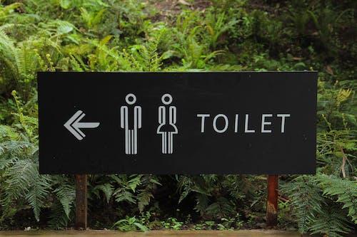 Безкоштовне стокове фото на тему «ванна кімната, вивіски, гендер, заводи»