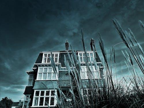 Fotobanka sbezplatnými fotkami na tému architektúra, budova, čierny abiely, fasáda