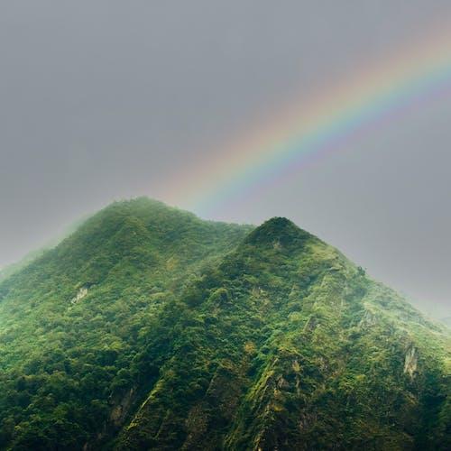 Gratis stockfoto met bergketen, bergtop, bos natuur