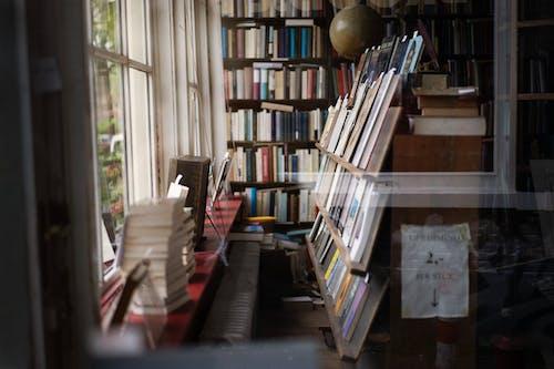คลังภาพถ่ายฟรี ของ การศึกษา, การออกแบบตกแต่งภายใน, คนรักหนังสือ