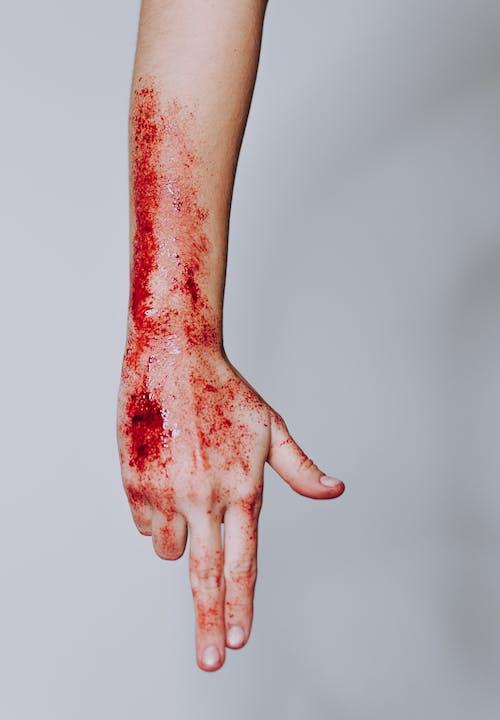Δωρεάν στοκ φωτογραφιών με αίμα, αιματηρός, ανατομία