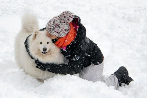 Person Hugging A Dog on Snow Covered Ground
