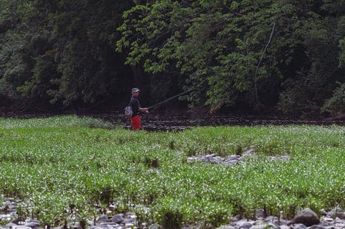 A Fisherman Using a Fishing Rod