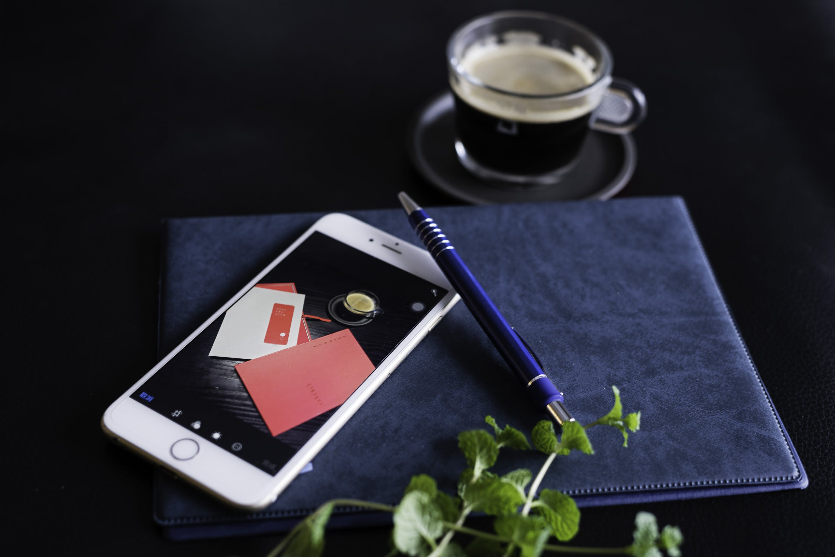 Silver Iphone 6 With Blue Click-pen