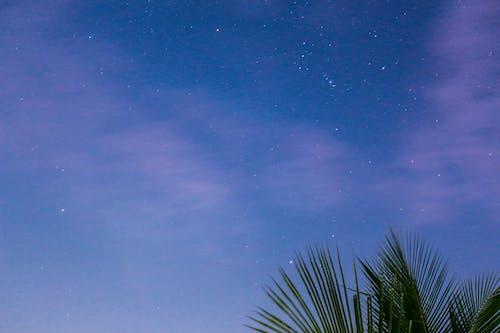 Imagine de stoc gratuită din celebrități, cer, cer înstelat