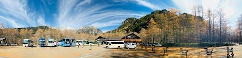 Foto d'estoc gratuïta de aigua, arbres, autobusos, bonic