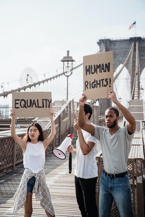 Fotos de stock gratuitas de acto electoral, al aire libre, democracia