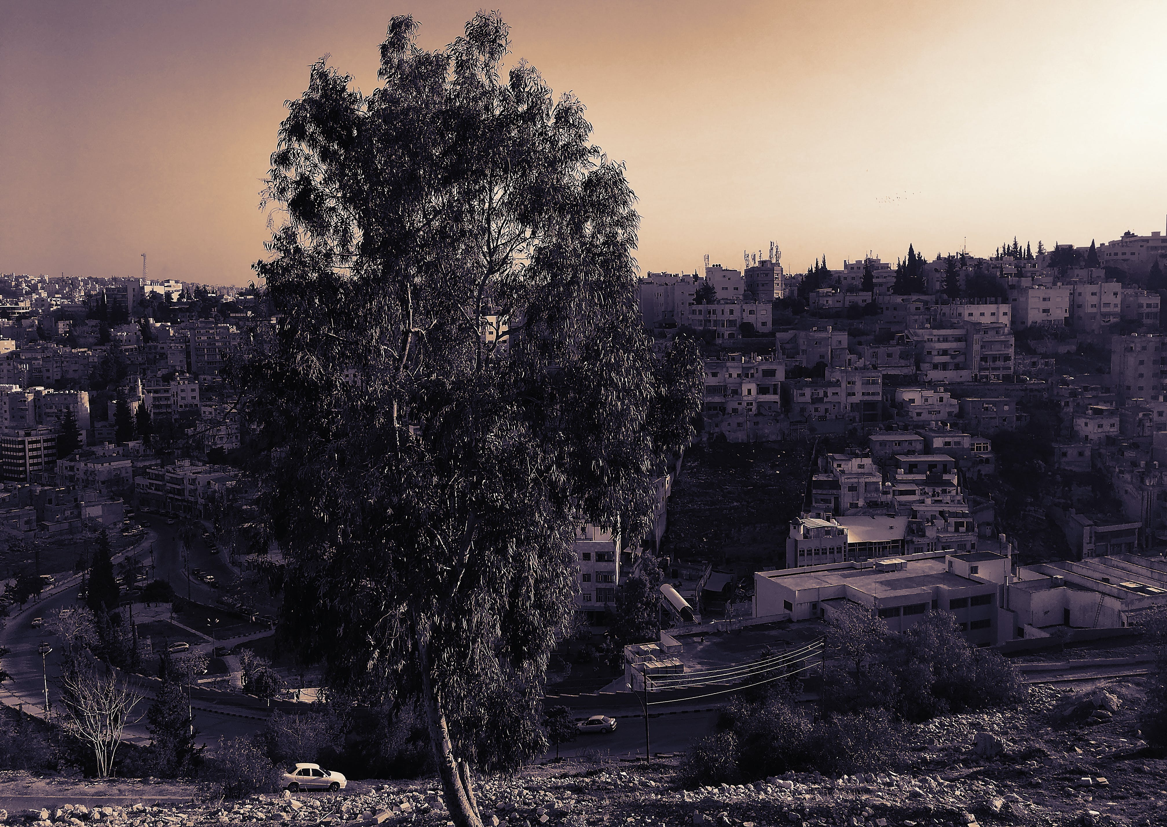 Free stock photo of amman, ancient, buildings, golden sunset
