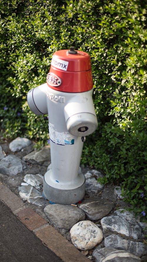 Free stock photo of fireplug, swiss