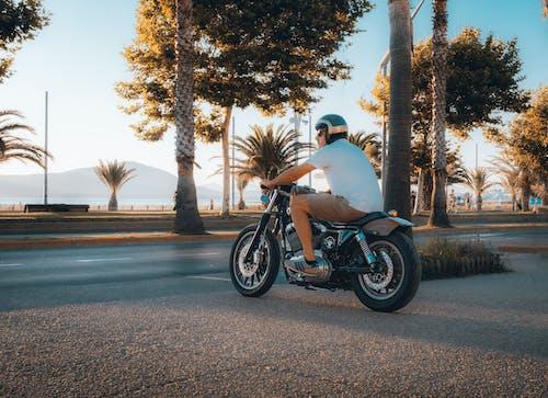 Free stock photo of adult, bike, biker