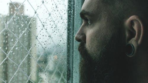 Fotos de stock gratuitas de hombre, húmedo, lluvia, mirando