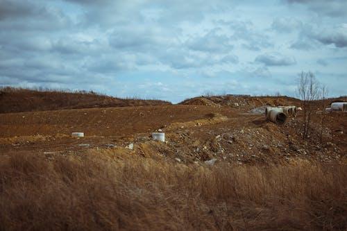농촌의, 들판, 시골, 야외에서의 무료 스톡 사진