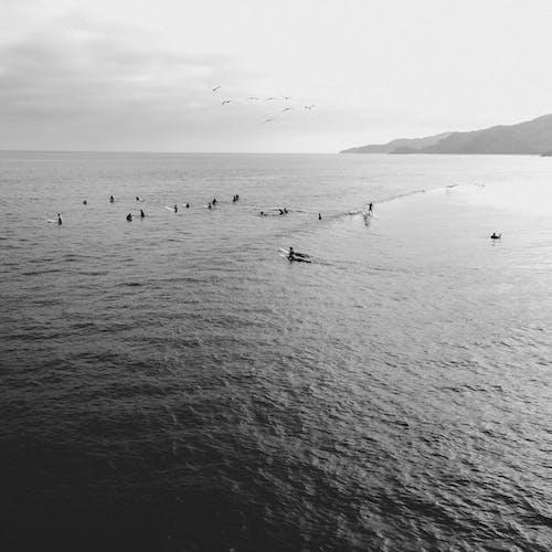 Immagine gratuita di acqua, alba, atmosfera estiva