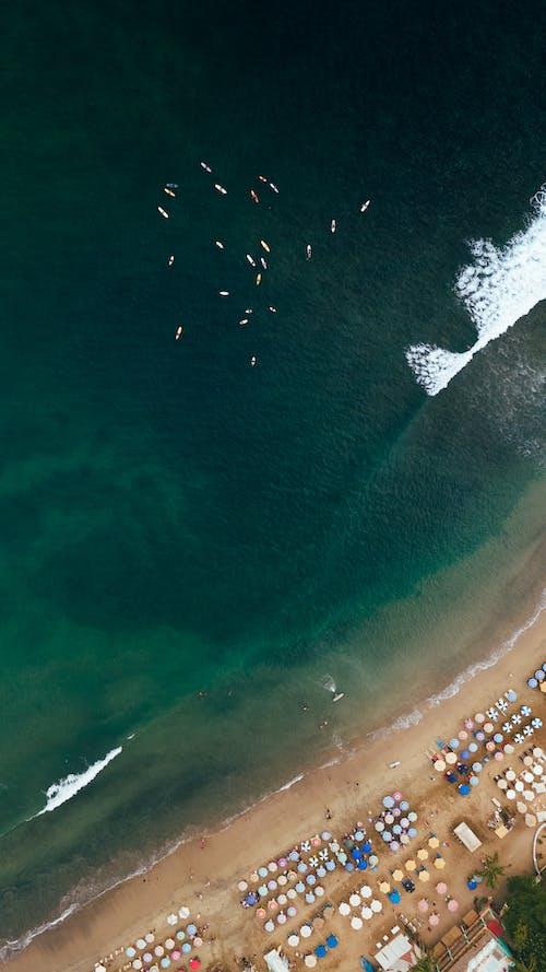 Immagine gratuita di acqua, atmosfera estiva, camminando in spiaggia