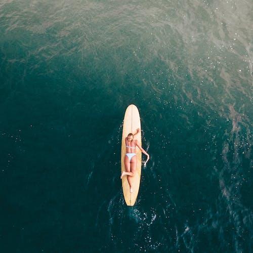 Immagine gratuita di acqua, atmosfera estiva, barca