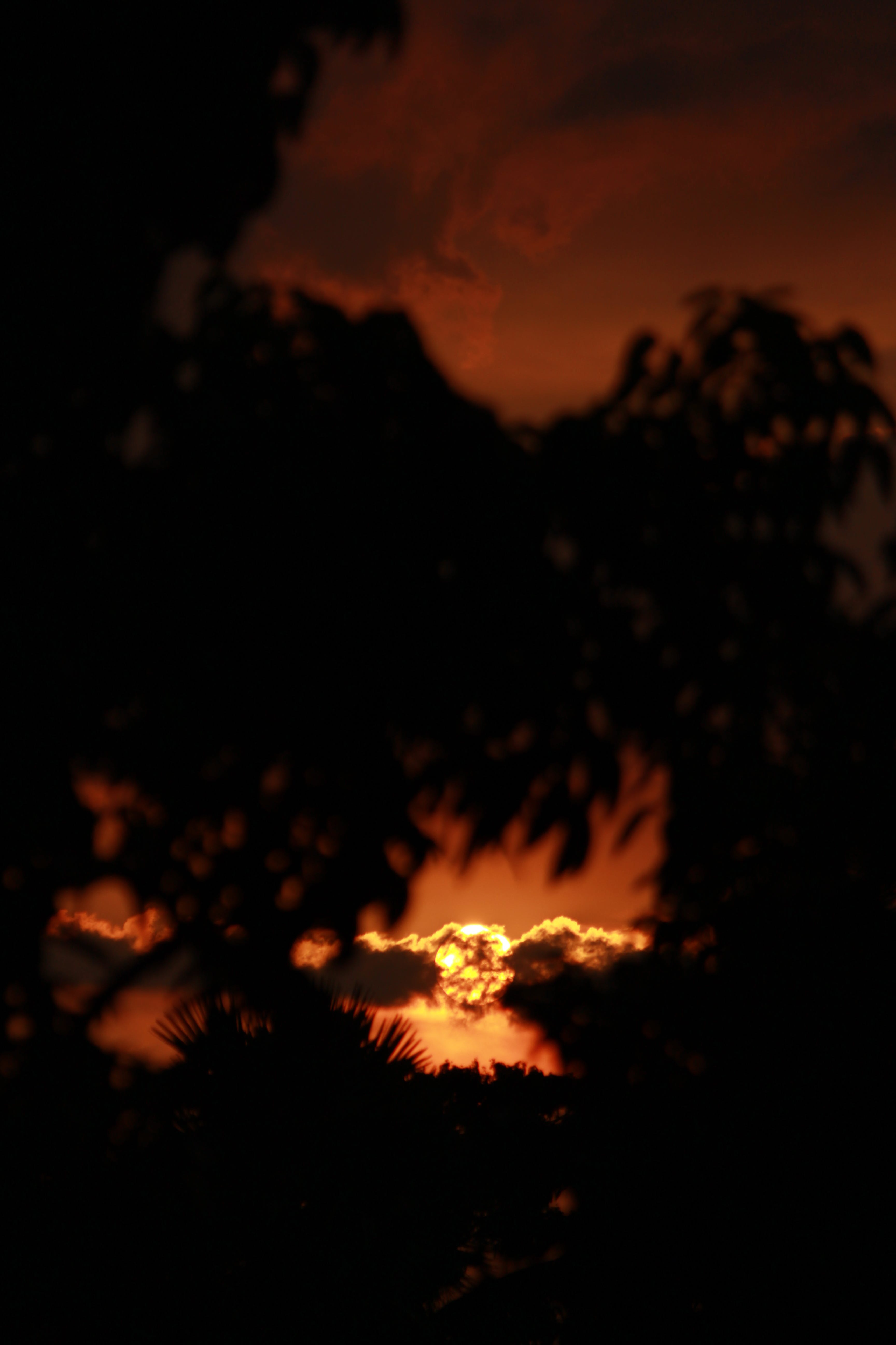 backlit, clouds, dark