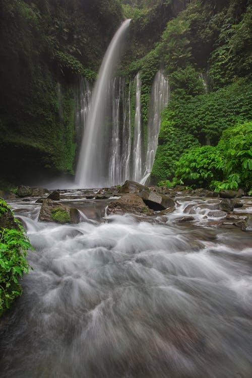 Безкоштовне стокове фото на тему «вода, водоспади, гора, камені»