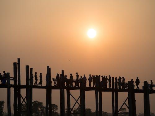 Immagine gratuita di alba, crepuscolo, persone
