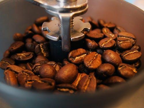 Darmowe zdjęcie z galerii z ekspres do kawy, fasola, kawa, kawa mielona
