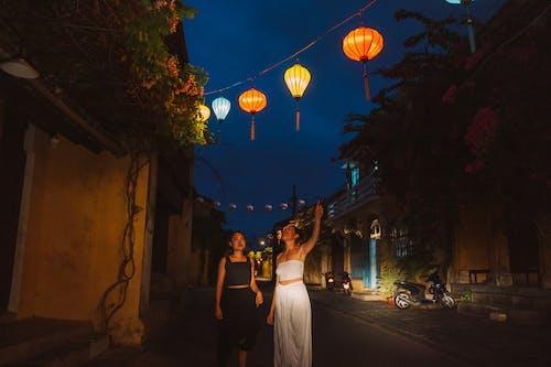Imagine de stoc gratuită din apus, arbore, balon