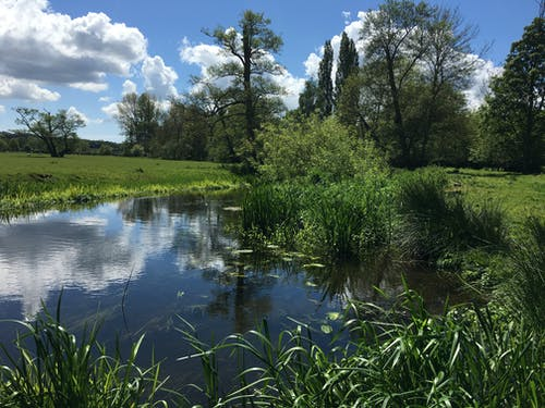 Free stock photo of The River Stour on a hot summer's day