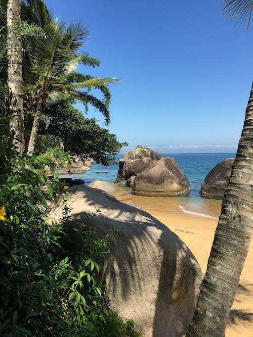 Free stock photo of tropical island
