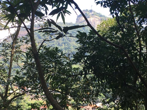 Free stock photo of Christo Redentor, Rio de Janiero